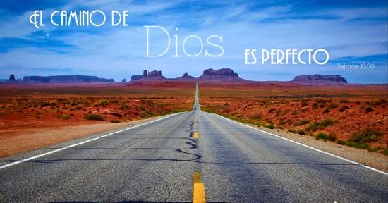 El-camino-HD